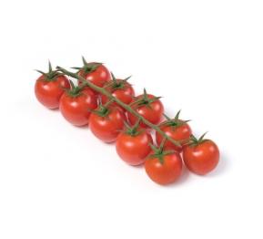 עגבניות שרי באשכול