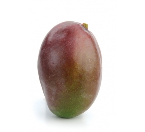 מנגו טומי