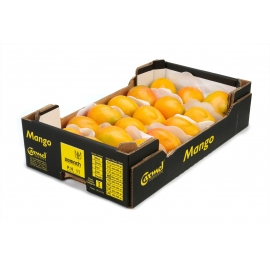 Carton weight: 6 kg